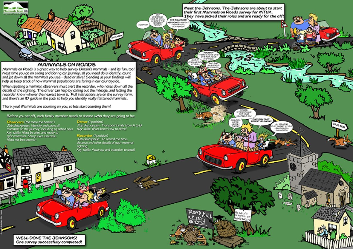 People's Trust for Endangered Species, UK 2006. This 'citizen science' game allows players driving off on vacation to gather data for the annual PTES mammal roadkill census.